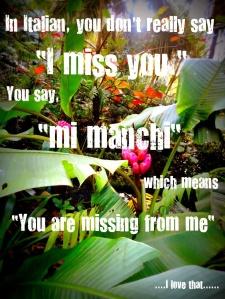 Italian Miss You